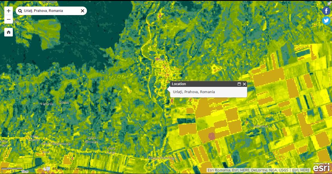 vegetation_index